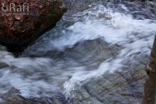 Rio Dorbolo 2