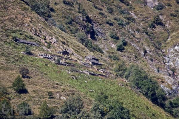Alpe Biordo